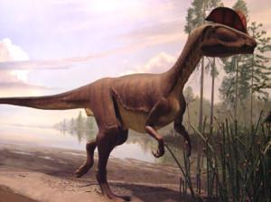 DinosaurStateParkDinosaur